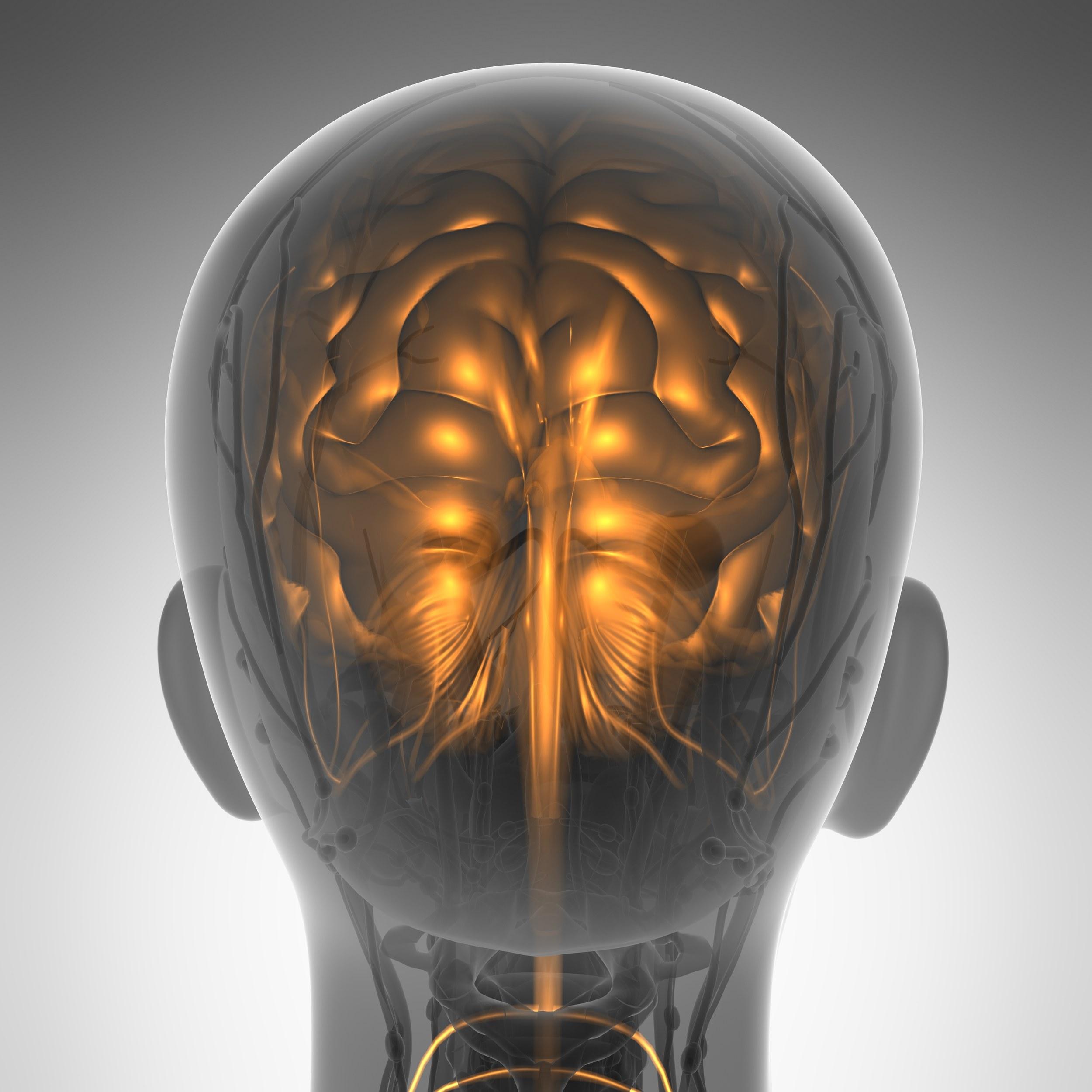 So verbessert Sport die Gehirnleistung