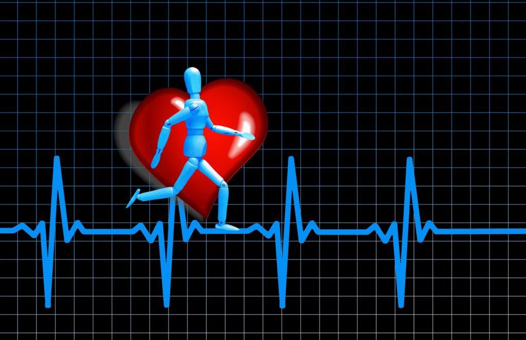 Das Messen der Herzfrequenzvariabilität kann Dein Training optimieren