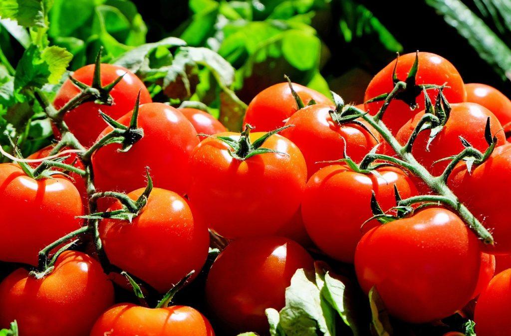 Tomaten sind voller Wachmacher
