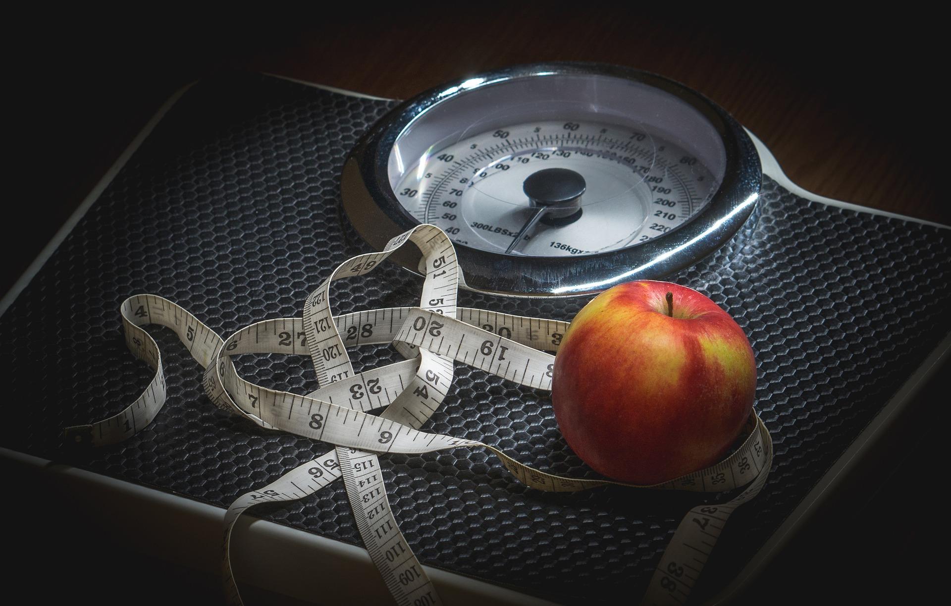 Diäten funktionieren fast immer nur mit Sport