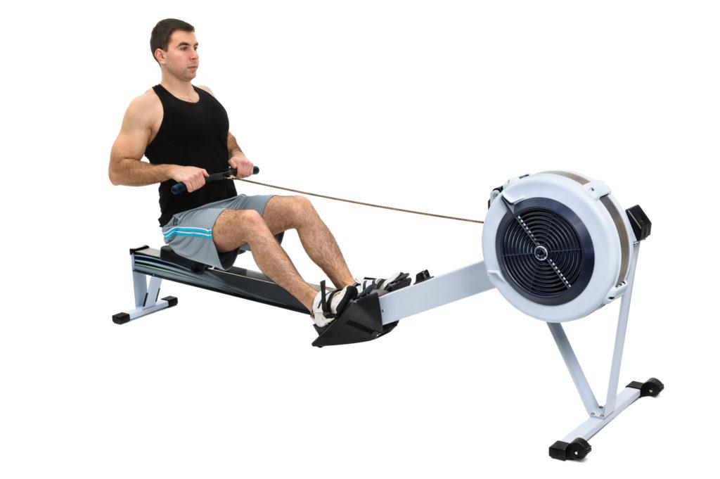 Auf dem Ruderergometer kommen viele Muskeln zum Einsatz