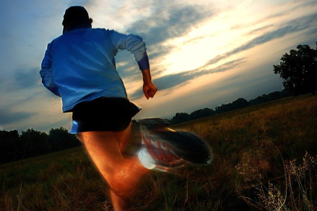 Hügelläufe, Krafttraining und plyometrisches Training erhalten die Sprintschnelligkeit