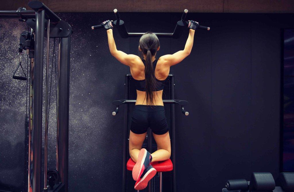 Muskelfasern