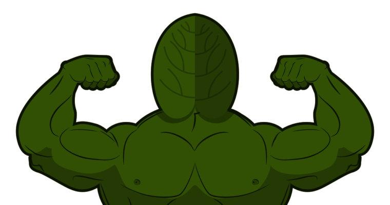 Mit Spinat wachsen Deine Muskeln besser