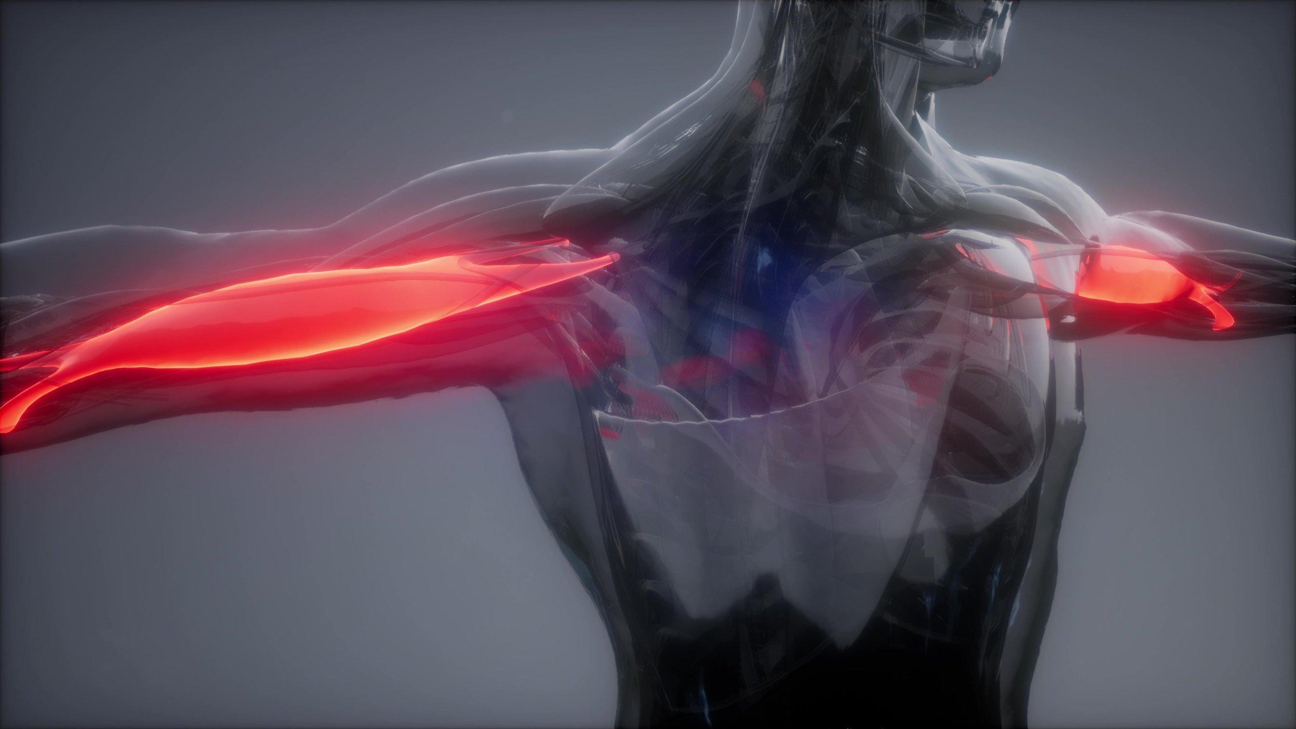 Muskuläre Dysbalancen erkennen und beheben