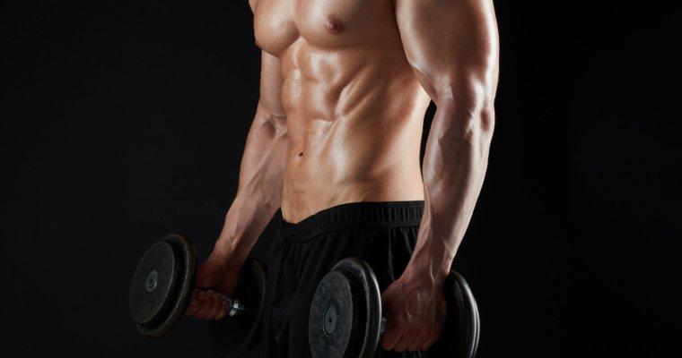 Muskelaufbautraining – alles was Du wissen musst