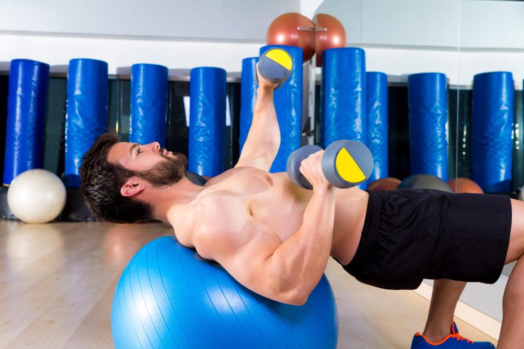 Muskelfasern und Training